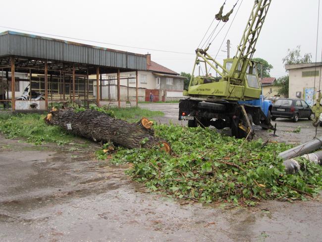 За едно денонощие на 10 юли, вторник, Самоков и съседни селища бяха връхлетени от две гръмотевични бури, придружени с напорист дъжд и силен, почти ураганен вятър. Първо купесто-дъждовни облаци покриха […]