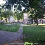 Кон пасе в центъра на Самоков…