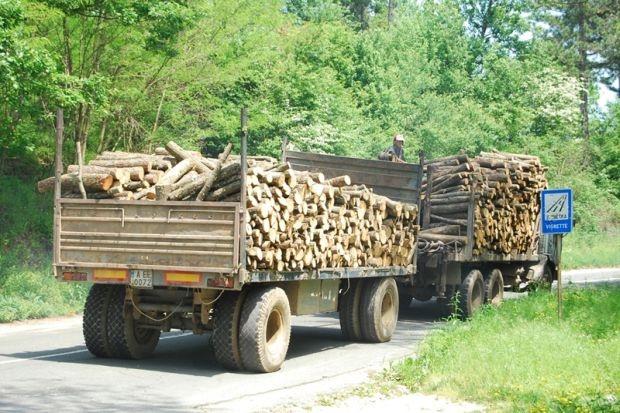 """Около 21 ч. на 20 юли в м. Червената земя служители от полицейския автопатрул спират за проверка товарен автомобил """"Урал"""", собственост на самоковска фирма за дърводобив. Камионът бил натоварен с […]"""