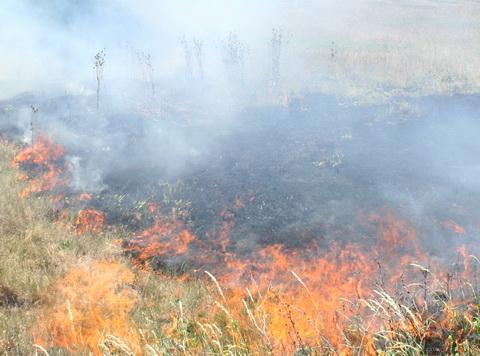 Циганска постройка без необходимите документи се е запалила на 5 август следобед. Изгорели са 30 кв. метра от покрива и един тон сено, което е било складирано под него. Екипите […]
