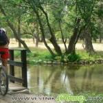 Туристическата градина и Лаго се обновяват