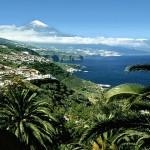 Преживелици от Тенерифe – картини от много известен, за някои – неизвестен остров