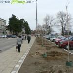 Фирма и общинари засадиха стотици фиданки