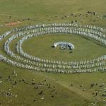 Дъновистите срещнаха на Седемте езера Лятната нова година