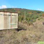 """Актуализират плана на парк """"Витоша"""""""