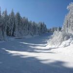 Летците се готвят за общоармейския шампионат по ски