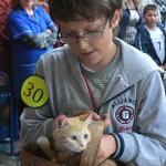 Училище организира за 4-и път изложба на животни