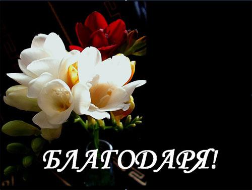 Изказвам своята искрена и сърдечна благодарност към уважаемите, достойни и всеотдайни служители на Община Самоков г-жа Перфанова и г-жа Кашинова, които отделиха от личното си време и със своето присъствие […]