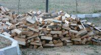 От 27 януари в Общинското лесничейство започва записването за доставката на дърва за огрев. Желаещите трябва да отговарят на условията, определени от Общинския съвет /Решение № 1241 от 21 декември […]