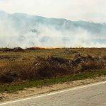 Пожар край Широки дол, спасиха гора