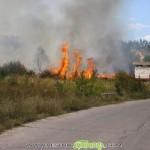 Палене на стърнища предизвика четири пожара в Самоковско