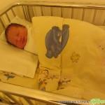305 бебета и 347 починали жители в община Самоков за 2017 г.