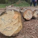 И горски фирми искат подкрепа от държавата