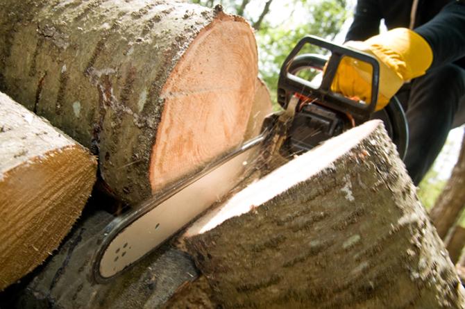 Два акта са съставени през последните дни за нарушения в района на самоковското държавно горско стопанство – извършена е сеч на 2 куб. м иглолистна строителна дървесина и 2 кубика […]