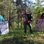 За гората на Самоков