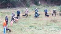 Състезание на кучета за лов на диви свине се проведе на 11 септември край Доспей. Участваха 16 ловни животни, включително от съседни области и от далечния Исперих. Най-добре от местните […]