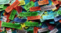 """""""Благодаря"""", """"Спасибо"""", """"Thank you"""", """"Merci"""", """"Gracias"""", """"Grazie"""", """"Dank je"""", """"Obrigada"""", """"Hvala""""… – на всички езици звучи толкова мелодично и красиво, гали ухото и ни пренася в един по-добър и по-истински […]"""