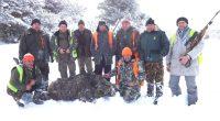 С огромен 220-килограмов глиган и с трофей – златен медал, завършиха ловния сезон членовете на ловната дружинка в Клисура. Слуката споходила за първи път ловеца Цветелин Атанасов, който с един […]