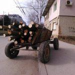 Заловиха млад мъж с контрабандна дървесина