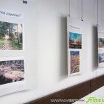Ученици подредиха фотоизложба за природата