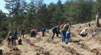 Около 100 души, повечето от които ученици, ръководени от своите преподаватели, участваха в залесяването на Ридо в събота, на 1 април. С акцията започна и тазгодишната традиционна Седмица на гората. […]