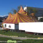 """Цирк """"Колозеум"""" обещава незабравими емоции за самоковци"""