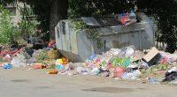 """Пред входа на къщата ми, в която живея във вилна зона """"Мечката"""", поставиха контейнер за боклук. И тук трябва да се събира боклукът на цялата вилна зона! Можете да си […]"""