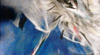 """Общинската библиотека """"Паисий Хилендарски"""" ви кани на представяне на новата книга на Зинаида Хаджимитова """"Вятър за глухарчета"""" на 28 септември, четвъртък, 17.30 ч., във фоайето пред Градската художествена галерия """"Проф. […]"""
