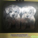 """Ученици от ПГ """"Константин Фотинов"""" сътвориха… вълшебни животни"""