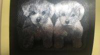 """Фоайето на Общинската библиотека """"Паисий Хилендарски"""" една седмица ще бъде населено с… вълшебни животни. Това стана известно на откриването на изложба там на 12 февруари. Преподавателката от ПГ """"Константин Фотинов"""" […]"""