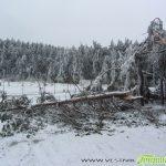 Ридо страда – много дървета се прекършиха от снега и леда