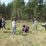 Засадиха 400 фиданки по случай Седмицата на гората