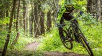 Любителите на планинското колоездене могат да се възползват от поредната оферта на Боровец за лятото. На 22 юли в най-стария планински курорт на Балканите професионалният фотограф Георги Даскалов ще обикаля […]