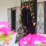С празника на Митрополитската черква започнаха тържествата в Самоков
