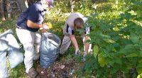 """Петдесет служители от Дирекция """"Национален парк """"Рила"""" се включиха в кампанията """"Да изчистим България заедно"""". Към тях се присъединиха 40 доброволци от Благоевград на възраст от 5 до 92 години […]"""