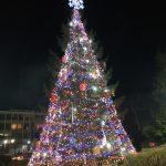 Грейнаха елхата и коледно-новогодишната украса в Самоков