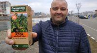 Нашият съгражданин Павлин Банков осъществи своя отдавнашна мечта, като пусна на пазара три продукта на основата на пинугенил /pinugenil/ – екстракт от шишарки на български алпийски клек /Pinus Mugo/. Натуралната […]