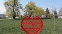 """Общо 1474 кг пластмасови капачки са събрали жителите на Самоков, включили се в националната кампания """"Капачки за бъдеще"""", за периода от есента до края на юни. Доброволци предадоха на 5 […]"""