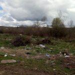 Пролетно почистване на селото и засаждане на дървета организират в Драгушиново