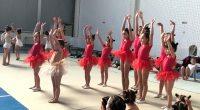 """Със златни медали се завърнаха всички 29 деца от самоковския клуб """"Джорджия"""", които участваха на 24 май в седмото издание на турнира по художествена гимнастика за купа """"Нюанс"""" в залата […]"""