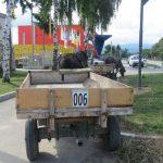 Близо 50 каруци в Самоков вече са регистрирани