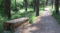"""През първите дни на юли бе окосена и почистена новоизградената зона за отдих в парк """"Ридо"""". Изхвърлени са всички отпадъци, поставени са чували на всички кошчета.От Общината обещаха съдовете за […]"""