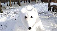 """Приказна бяла мечка от сняг сътвориха в Лаго, край новия параклис """"Св. Георги"""", дългогодишните любители на природата Петър Джупанов и Тодор Тодоров."""