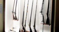 """Нова експозиция – """"Възрожденско оръжие"""", бе открита в Историческия музей, на втория етаж, в дните около честването на националния ни празник – на 5 март.Директорът на музея д-р Веселин Хаджиангелов […]"""