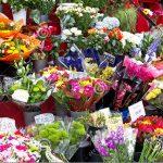 Търся жена за работа в магазин за цветя